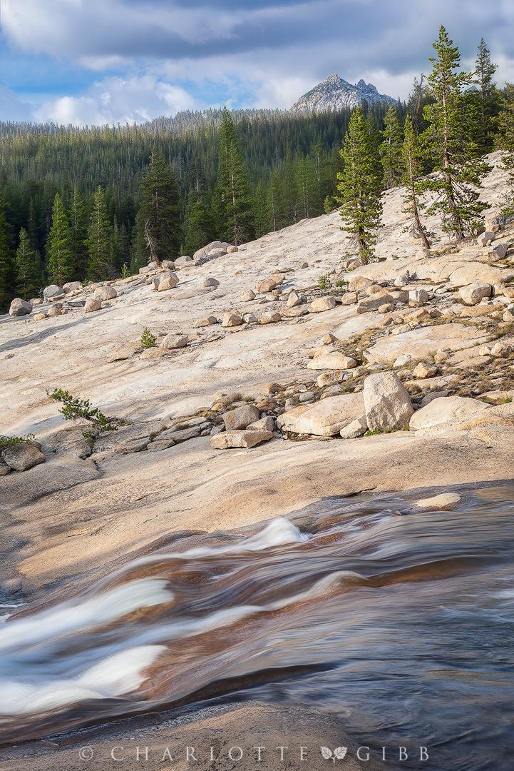 """Elements of Life"", July 12, 2015, Yosemite National Park"