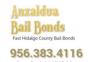 Anzalduas bail logo