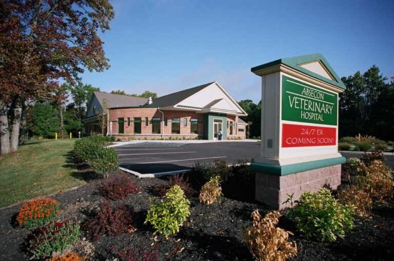 Absecon_Veterinary_Hospital-1-1024x679