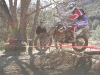 XC at Clear Creek Endurocross Section 2009
