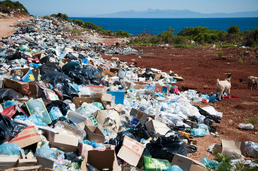 Binova Group Waste Innovation