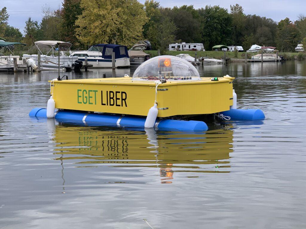 Blue green algae Safe Lakes