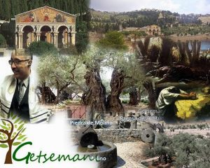 Gethsemane1 Collage (600x480)