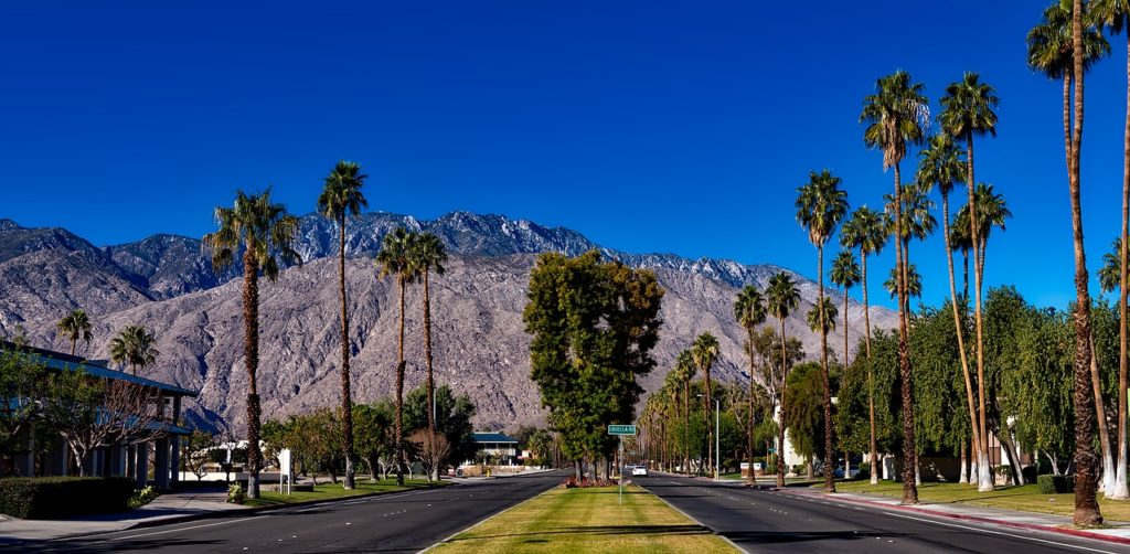 two lane highway lined with palm trees with mountains in the background