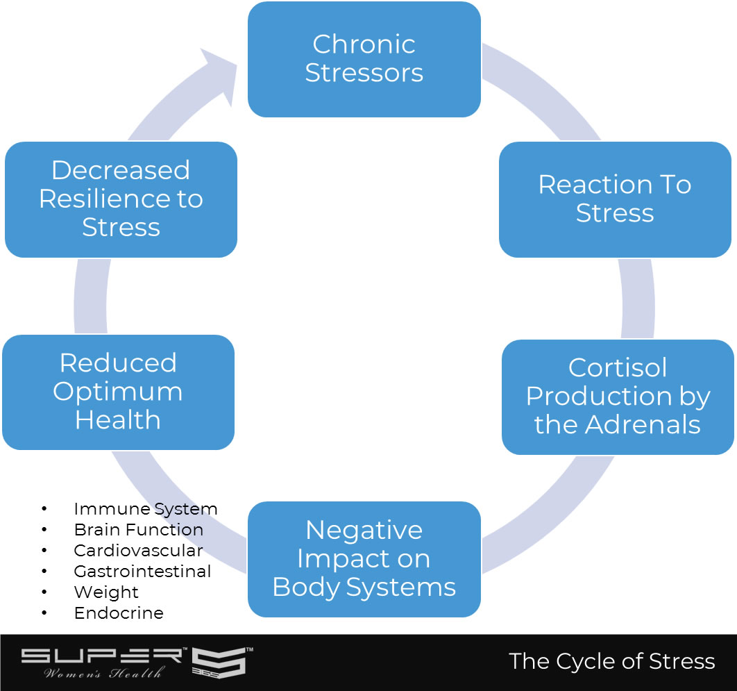 cycle-of-chronic-stress