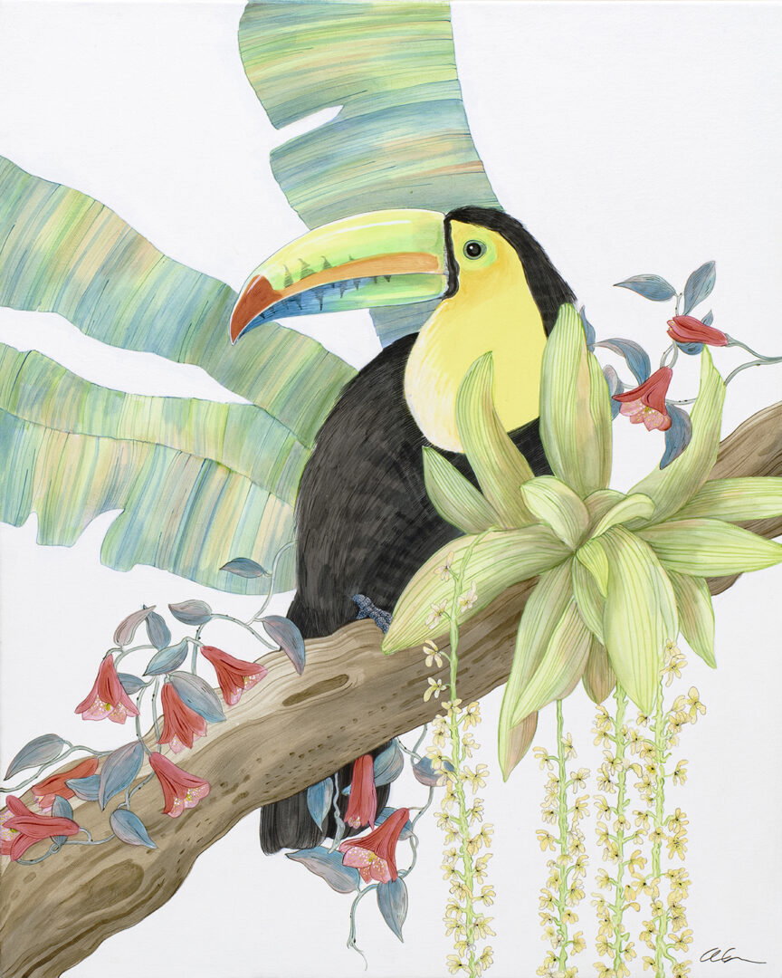 Toucan Play at That Game small