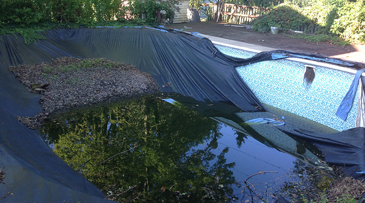 Carroll Bros Contracting old pool