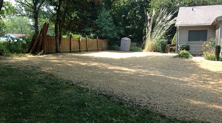 Carroll Bros Contracting new back yard