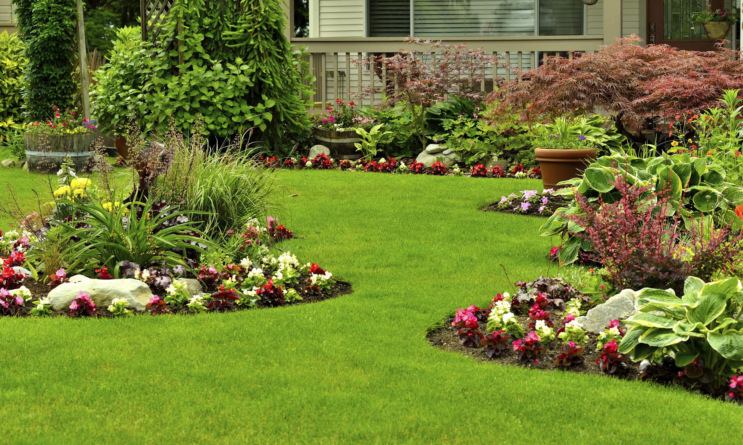 Carroll Bros Contracting new garden space