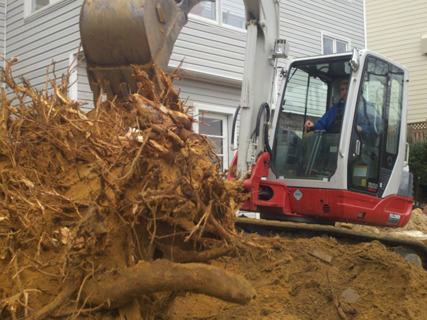 Carroll Bros. Contracting Excavating stump to make way for the new retaining wall