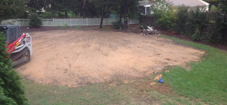 level and grading the yard