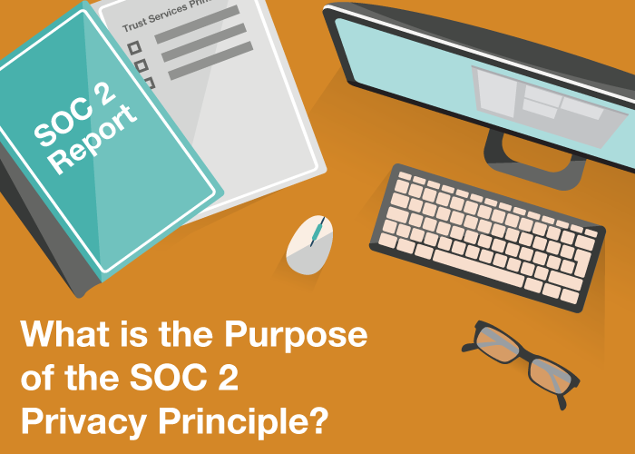 What is the Purpose of the SOC 2 Privacy Principle?