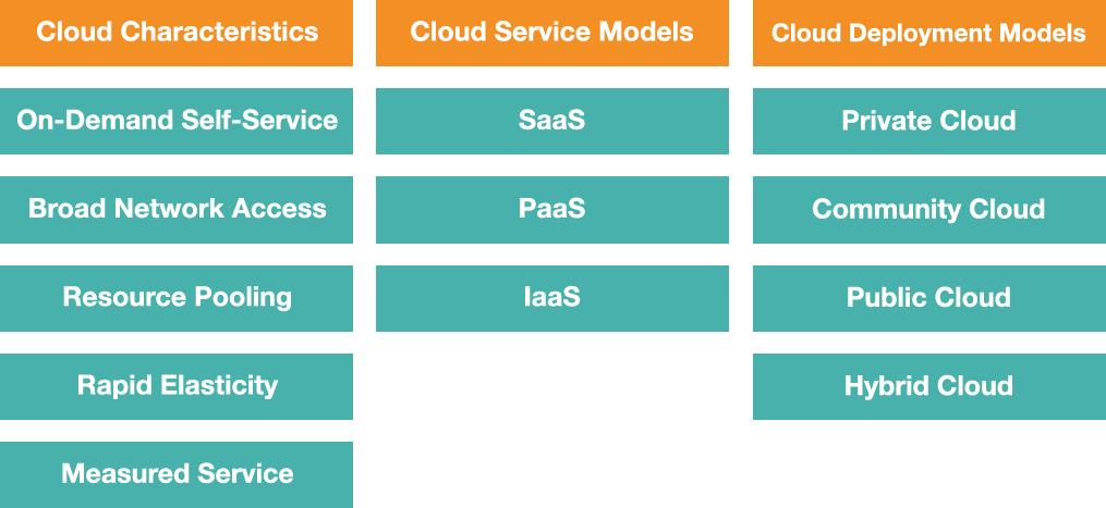 Cloud Computing Challenges - Who Should Perform Your Cloud Audit?