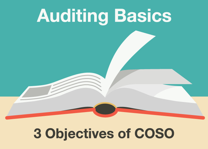 3 Objectives of COSO