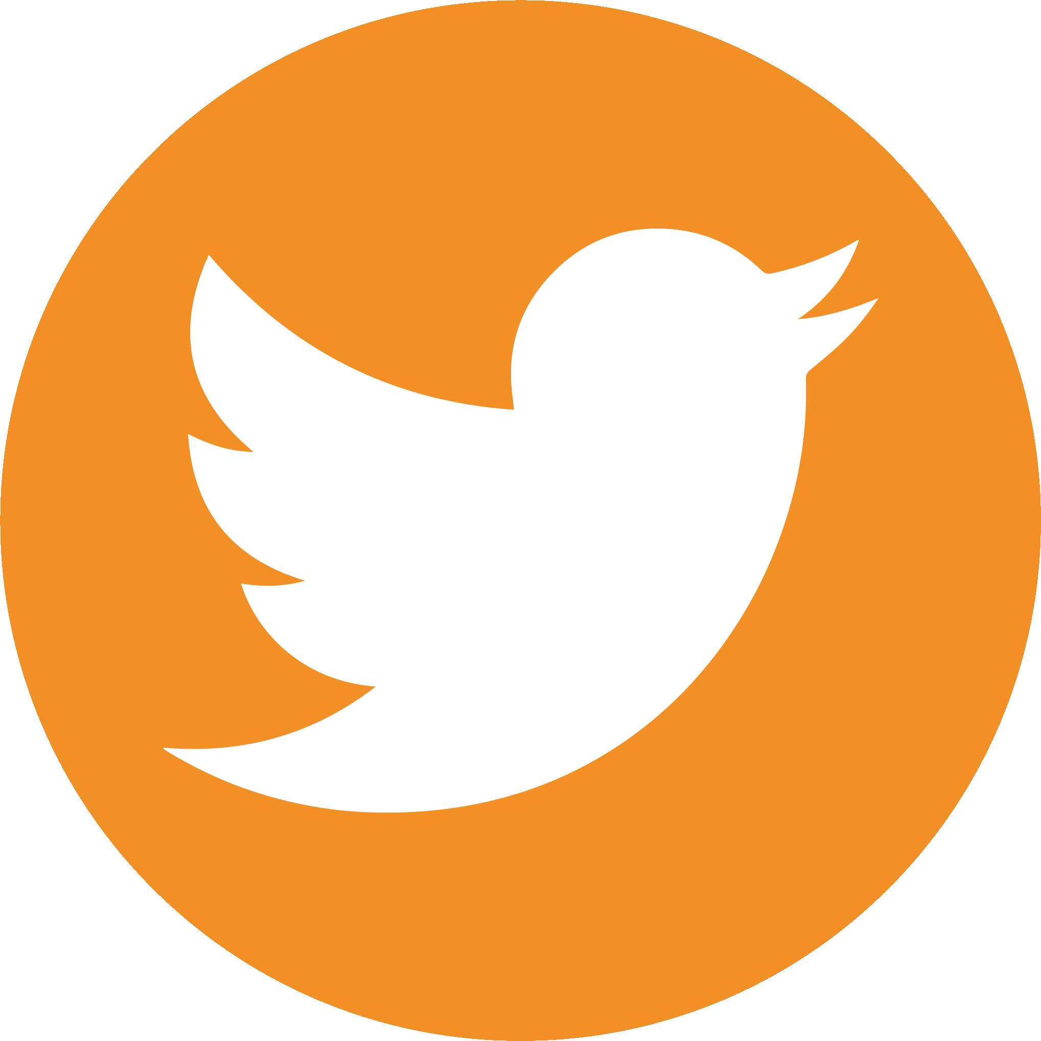 Twitter social media button