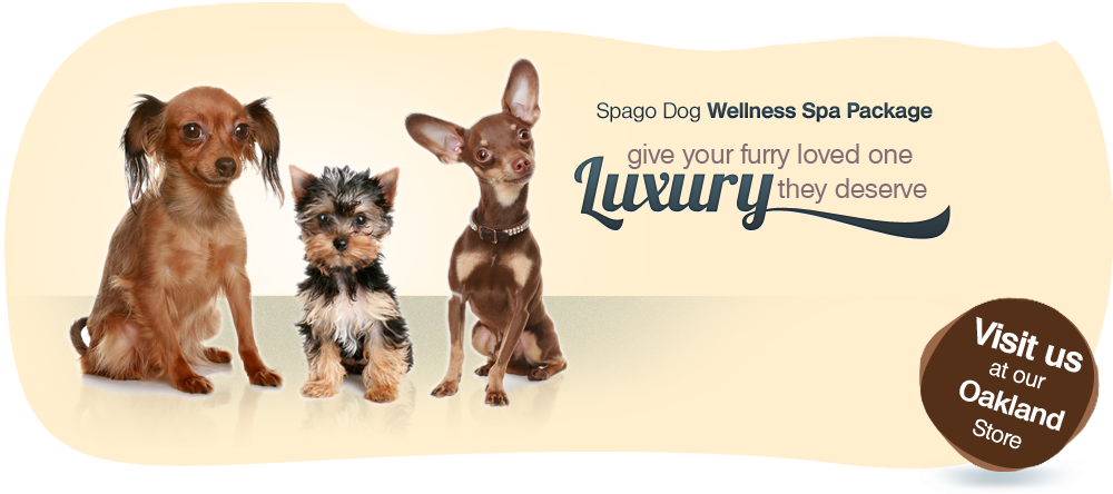 Spagodog Wellness Spa Package