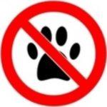 Pas d'animaux2