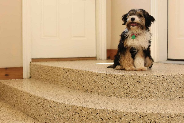 dog sitting at top of stairs on new custom garage floor coating
