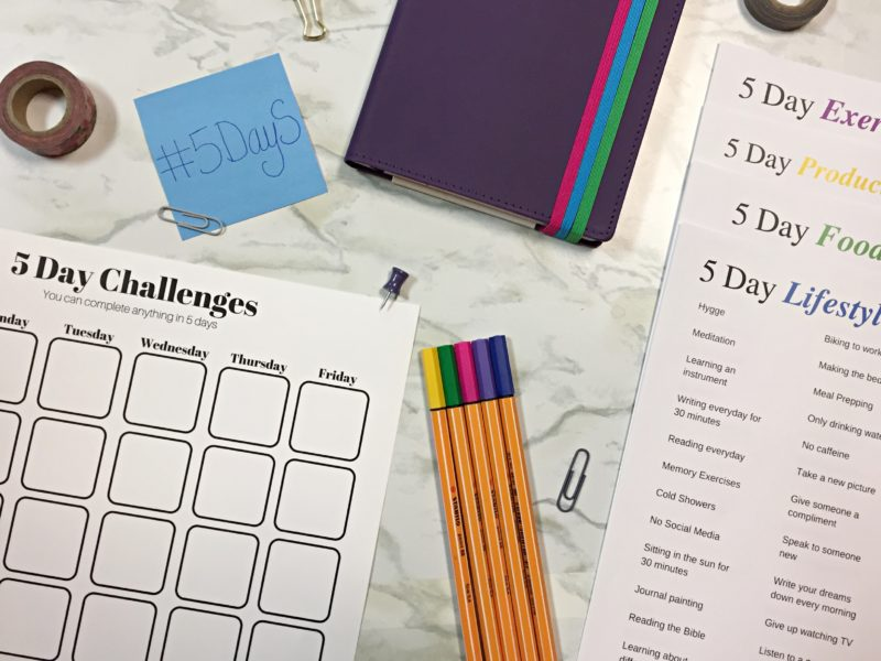 5 day challenges with samsill journal printouts