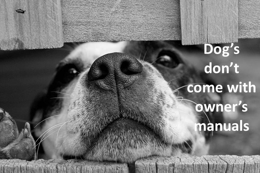 Dogs don't come with owners manuals!
