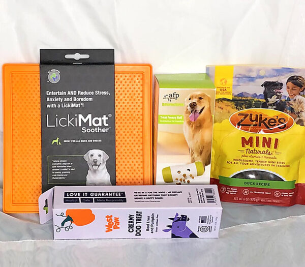 dog training enrichment kit for beginners fun tools for training allentown pa