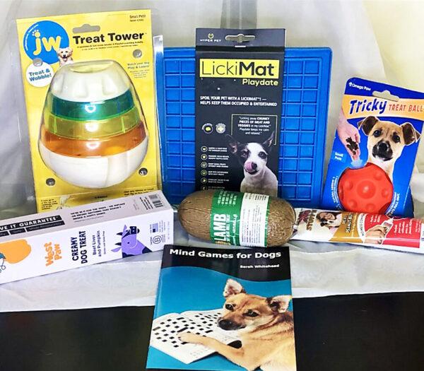dog training enrichment kit educanine training services allentown pa