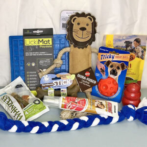 puppy play and training kit educanine allentown pa