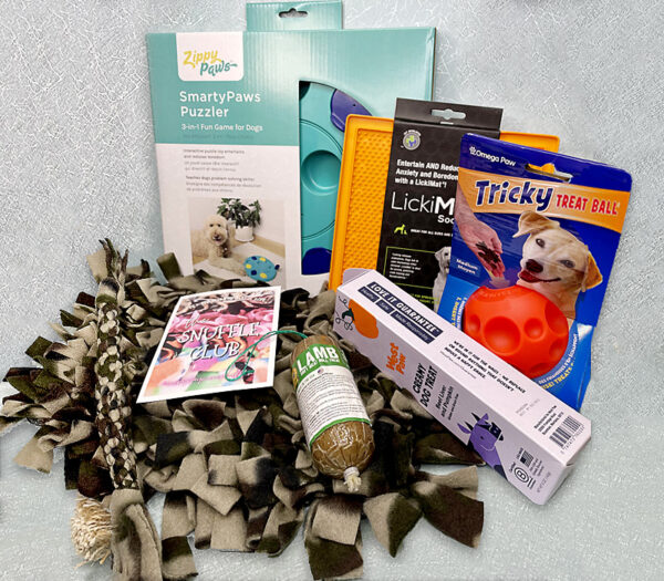 All Star Canine Enrichment Gift Set