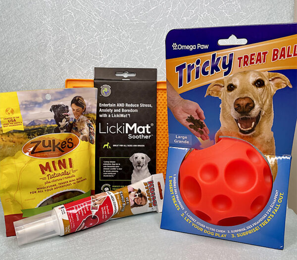 Beginner Canine Enrichment Kit