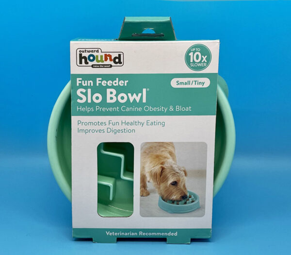 Slow Feeder Bowl Educanine