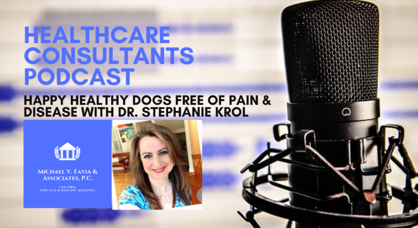 Pet Food Industry and Happy Healthy Dogs Free of Pain and Disease with Dr. Stephanie Krol