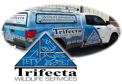 Trifecta Wildlife Services logo
