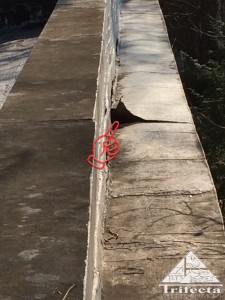 Loose flashing was exploited by gray squirrels to enter this property