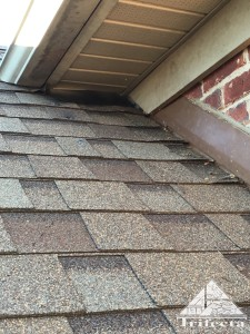 Completed raccoon exclusion at vinyl soffit return.