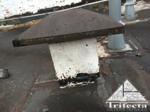 Roof vent on a Lexington KY property that allowed raccoon entry into ceiling over apartment.