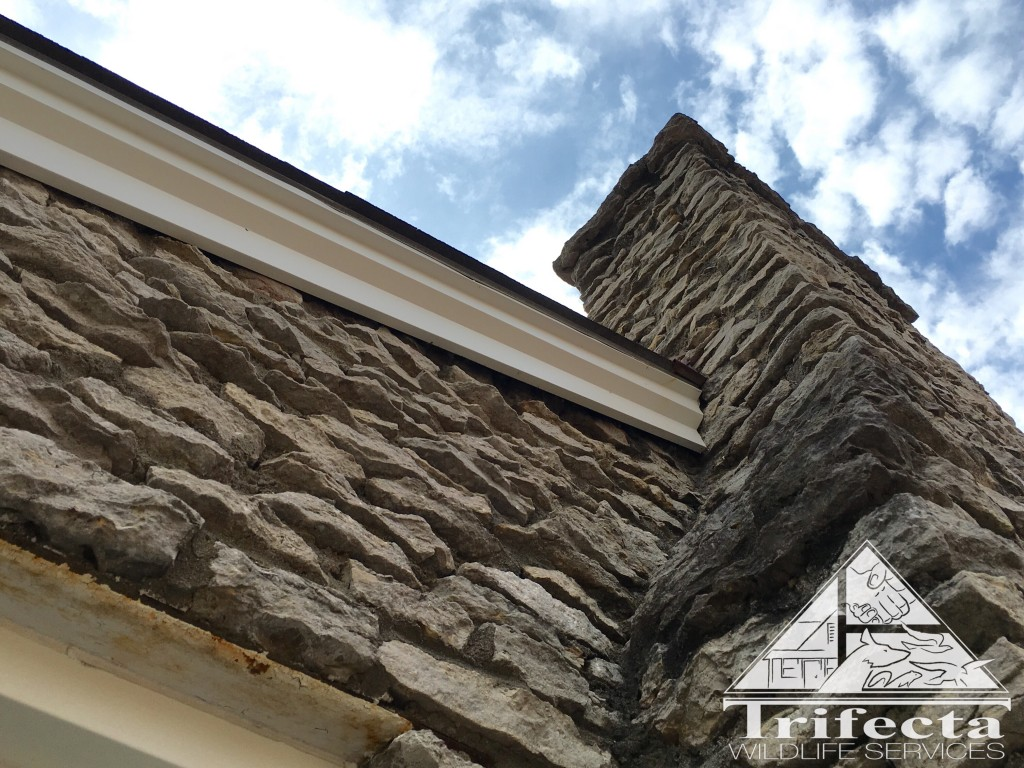 Before picture of construction gap between stone and fascia