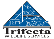 Trifecta Wildlife Services