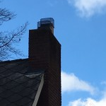 HY-C Raccoon Screens installed on chimney flues.