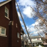 Lexington KY home where a raccoon had entered the chimney flue.