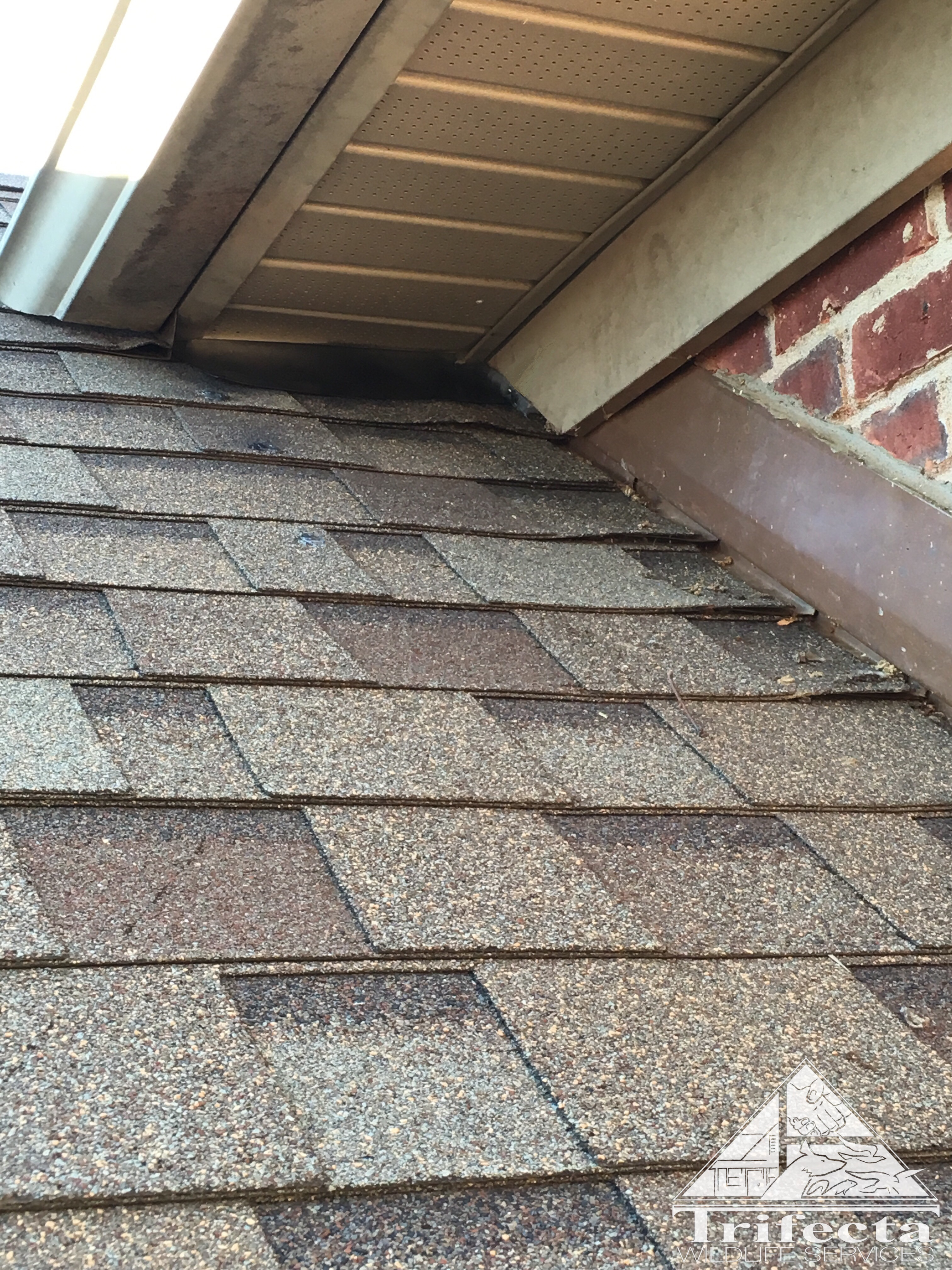 Completed repair of soffit return