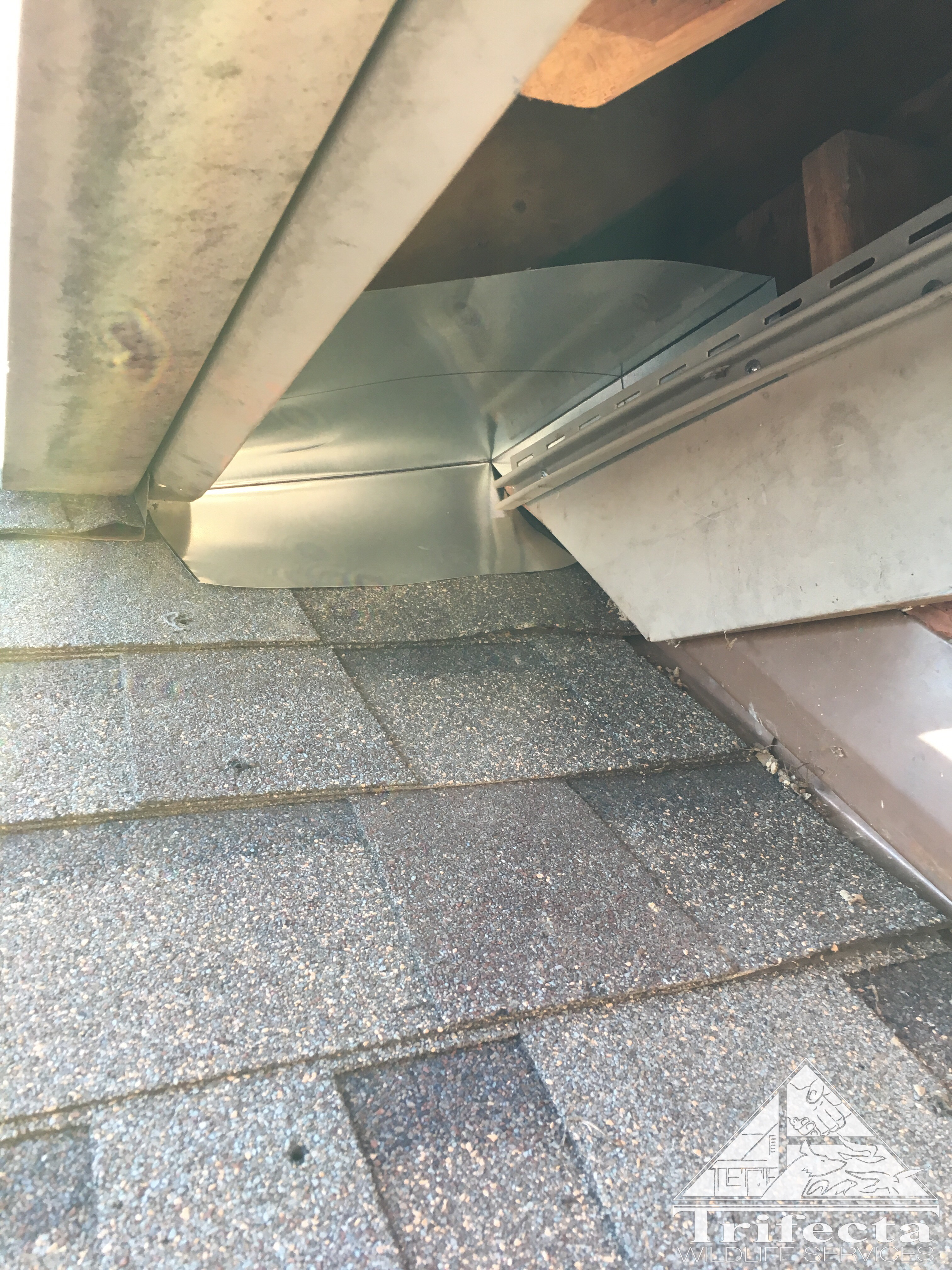 During repair of soffit return to exclude raccoons