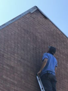 Image of Tim of Team Trifecta Inspecting a Structural Bat Entry