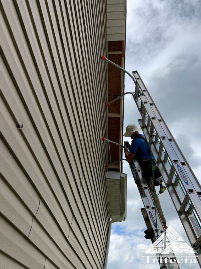 Tim installing the new fascia board