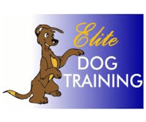elite-dog-training