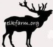 ElkFarm Stories