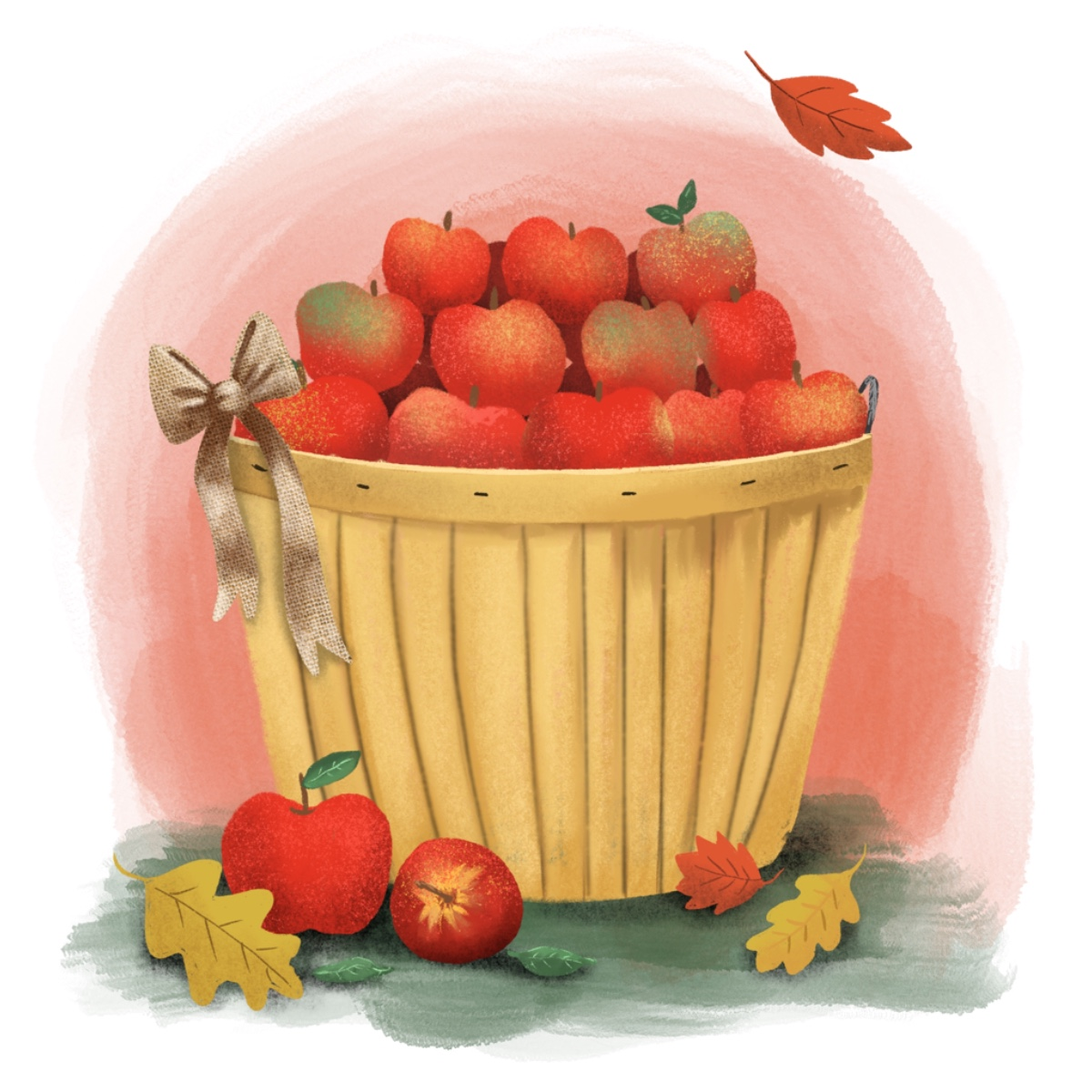 jjd-fall_applepicking_portfolio