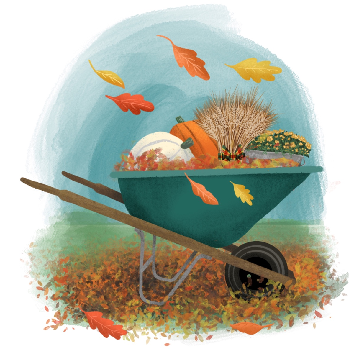 jjd-fall_wheelbarrow_portfolio