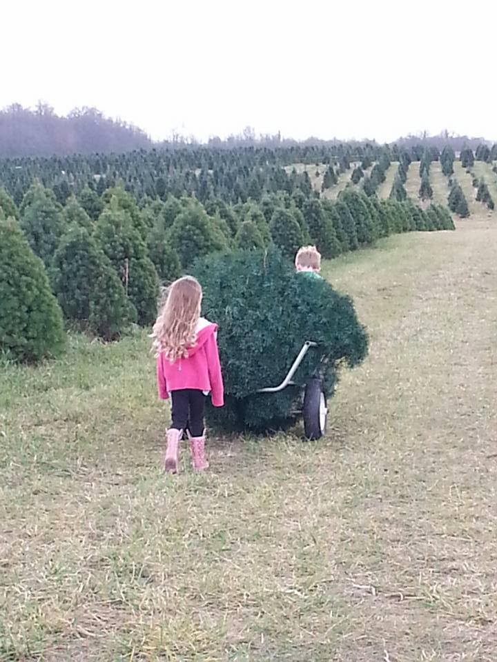 Memories at Christmas