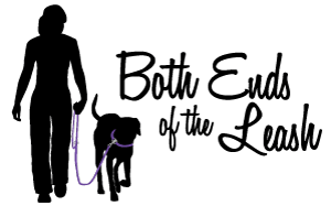 Both Ends of the Leash, LLC