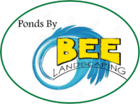 Ponds by BEE